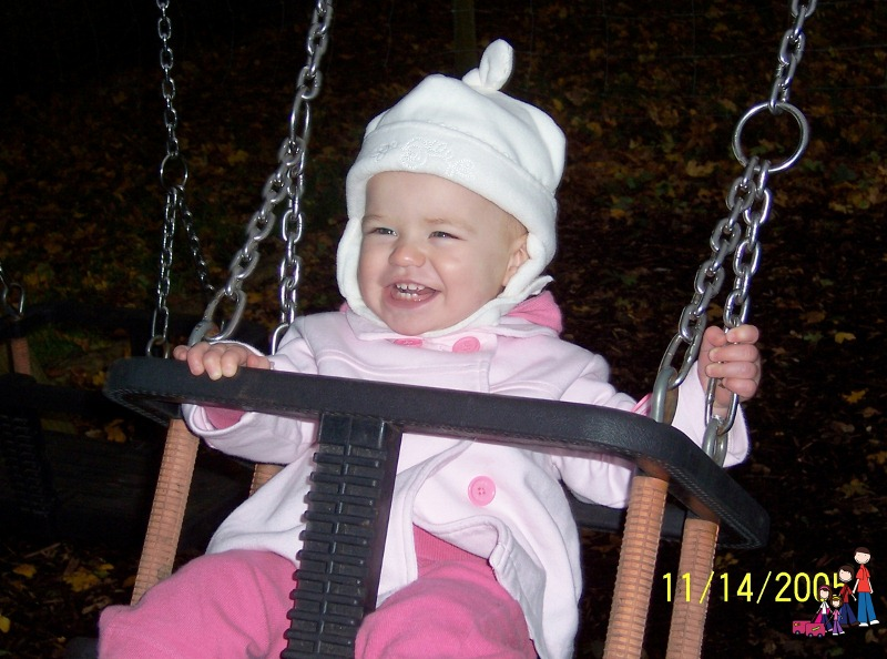 Swings at Bunratty Castle in Play Area