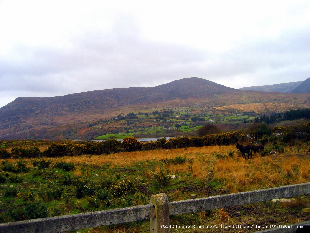 Beautiful Colors of Irish Countryside