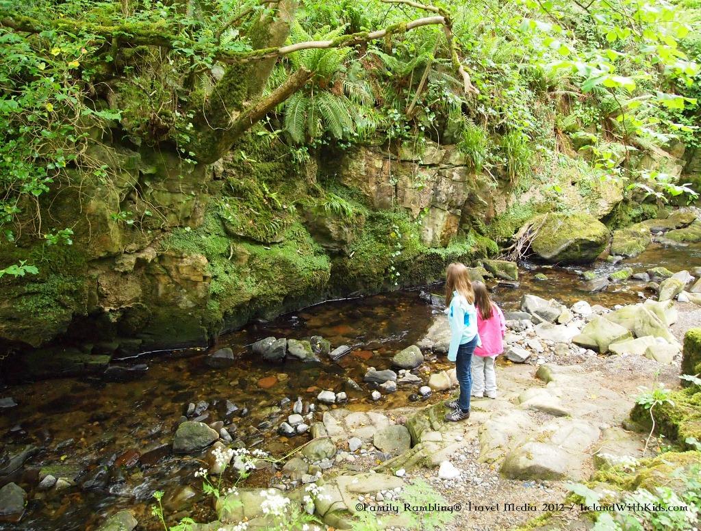 Nature Trail Cadamstown Ireland