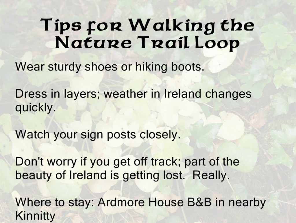 Tips for Hiking in Ireland