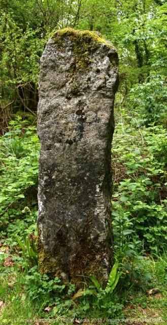 Ogham stone at Craggaunowen, County Clare, Ireland