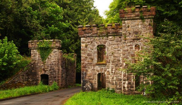Castle Caldwell Forest, Fermanagh, Northern Ireland