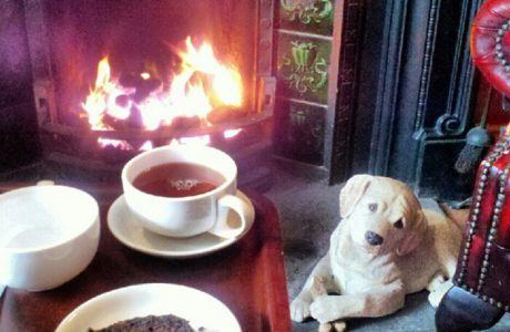 Luxury in Limerick : The Old Bank B&B in Bruff