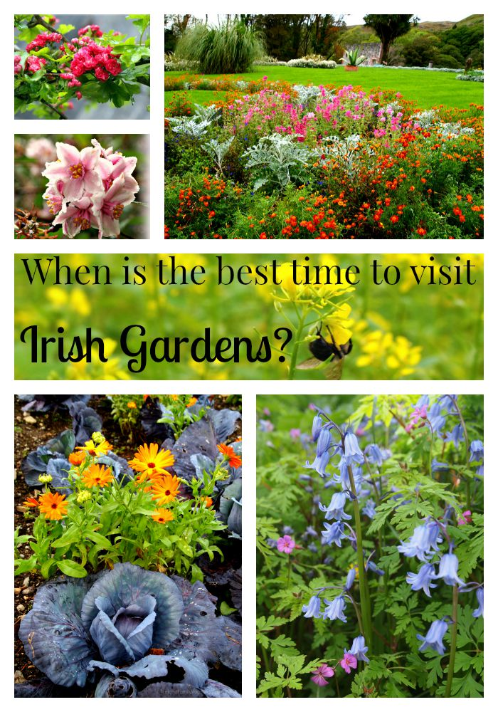 Ireland Travel Question: When is the Best Time to Visit Irish Gardens?