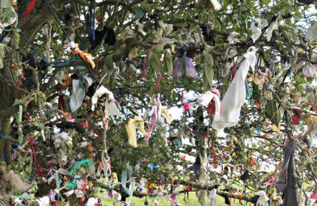 Rag Tree at the Hill of Tara