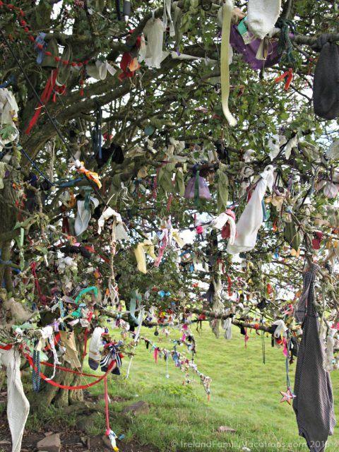 Rag Tree at the Hill of Tara, County Meath. Ireland travel tips   Ireland vacation   IrelandFamilyVacations.com
