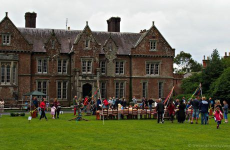 Family Fun and Adventure at Wells House in County Wexford