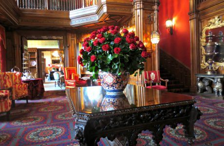 Roses at Ashford Castle