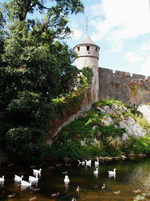 Ducks at Cahir Castle. Ireland travel tips | Ireland vacation | IrelandFamilyVacations.com