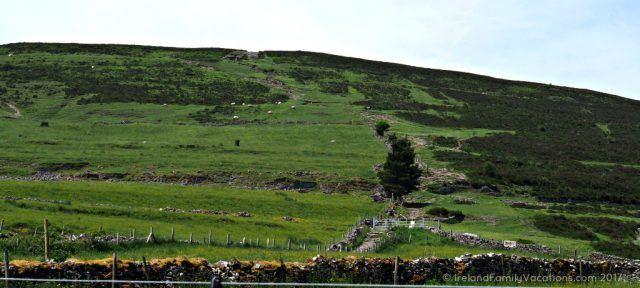 The climb up Knocknarea. Ireland travel tips | Ireland vacation | IrelandFamilyVacations.com