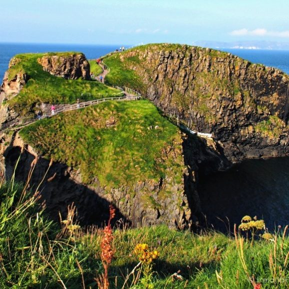 Carrick-a-Rede Rope Bridge, Causeway Coastal Route, Northern Ireland