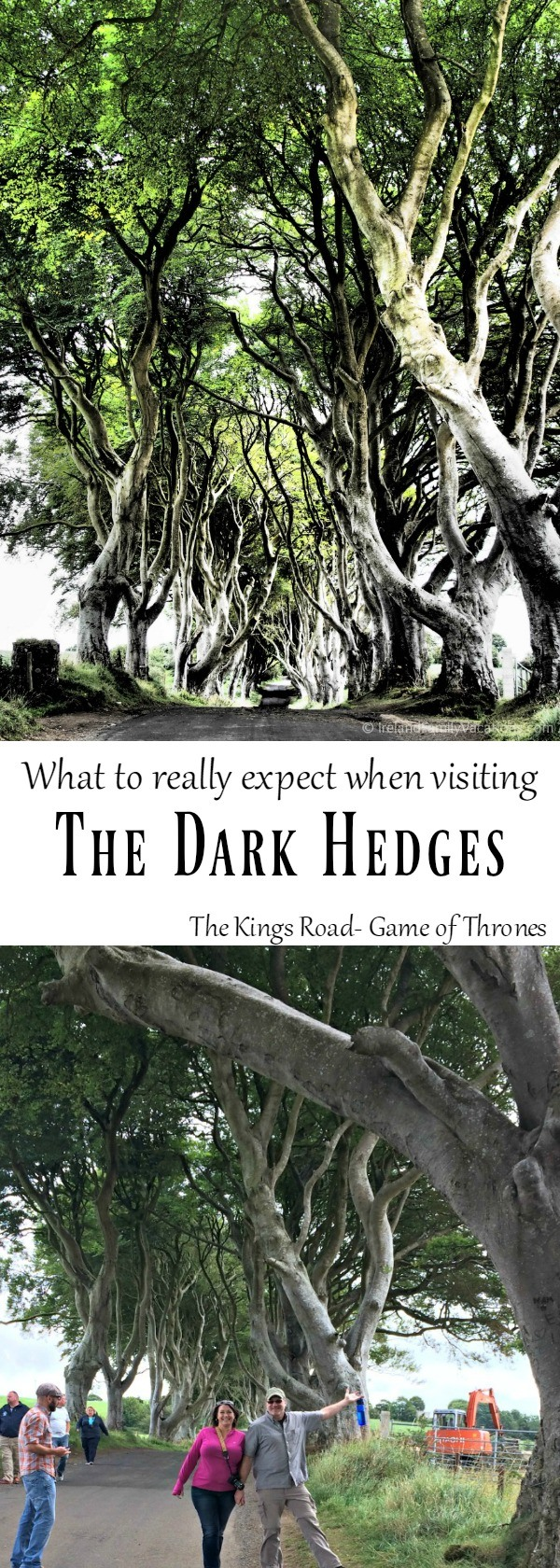 What to really expect when visiting the Dark Hedges aka The Kings Road in Game of Thrones. Ireland travel tips | Ireland vacation | IrelandFamilyVacations.com