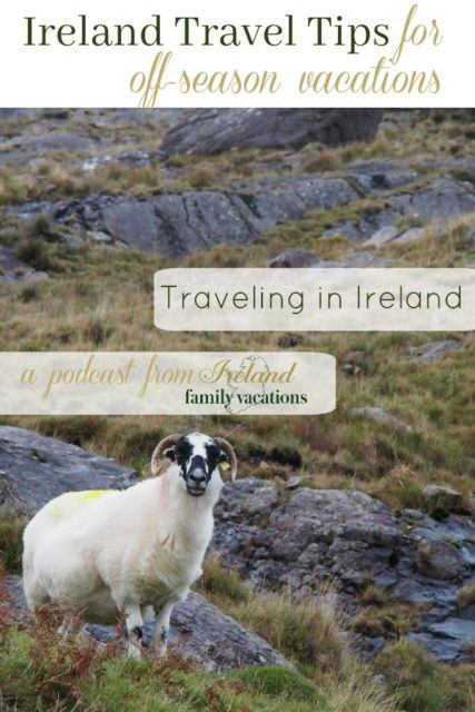 Irish sheep in the mountains. Ireland travel tips.